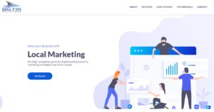 Big Fin Solutions Marketing Website